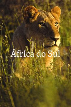 Africa do Sul.jpg