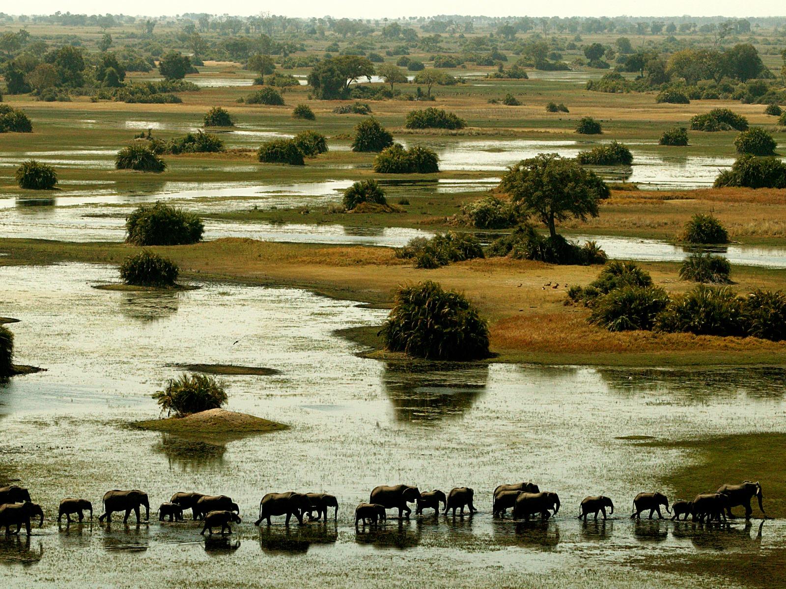 Wilderness SafariCF9U1193a_1600x1200.jpg