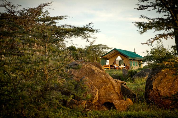 Wilderness Camp Tent ext LR.jpg