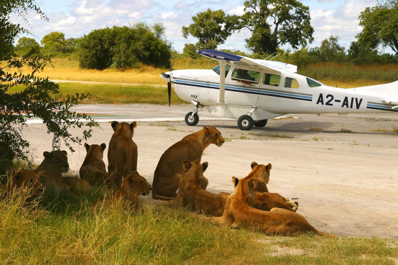Wilderness Safari - Kaparota_Training_426_master.jpg