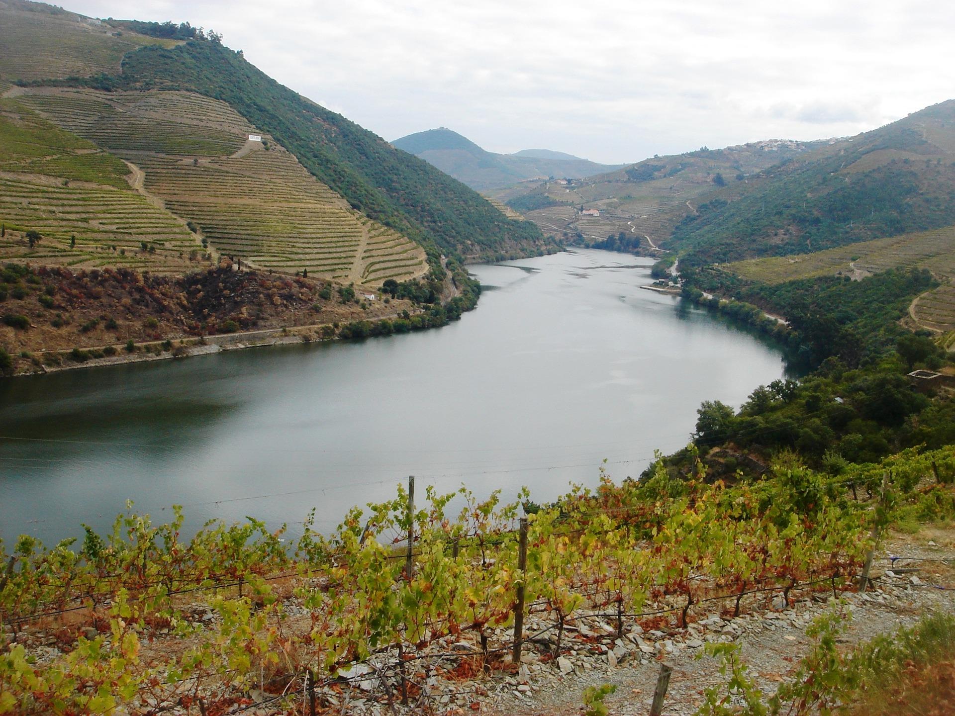 river-douro-838765_1920.jpg