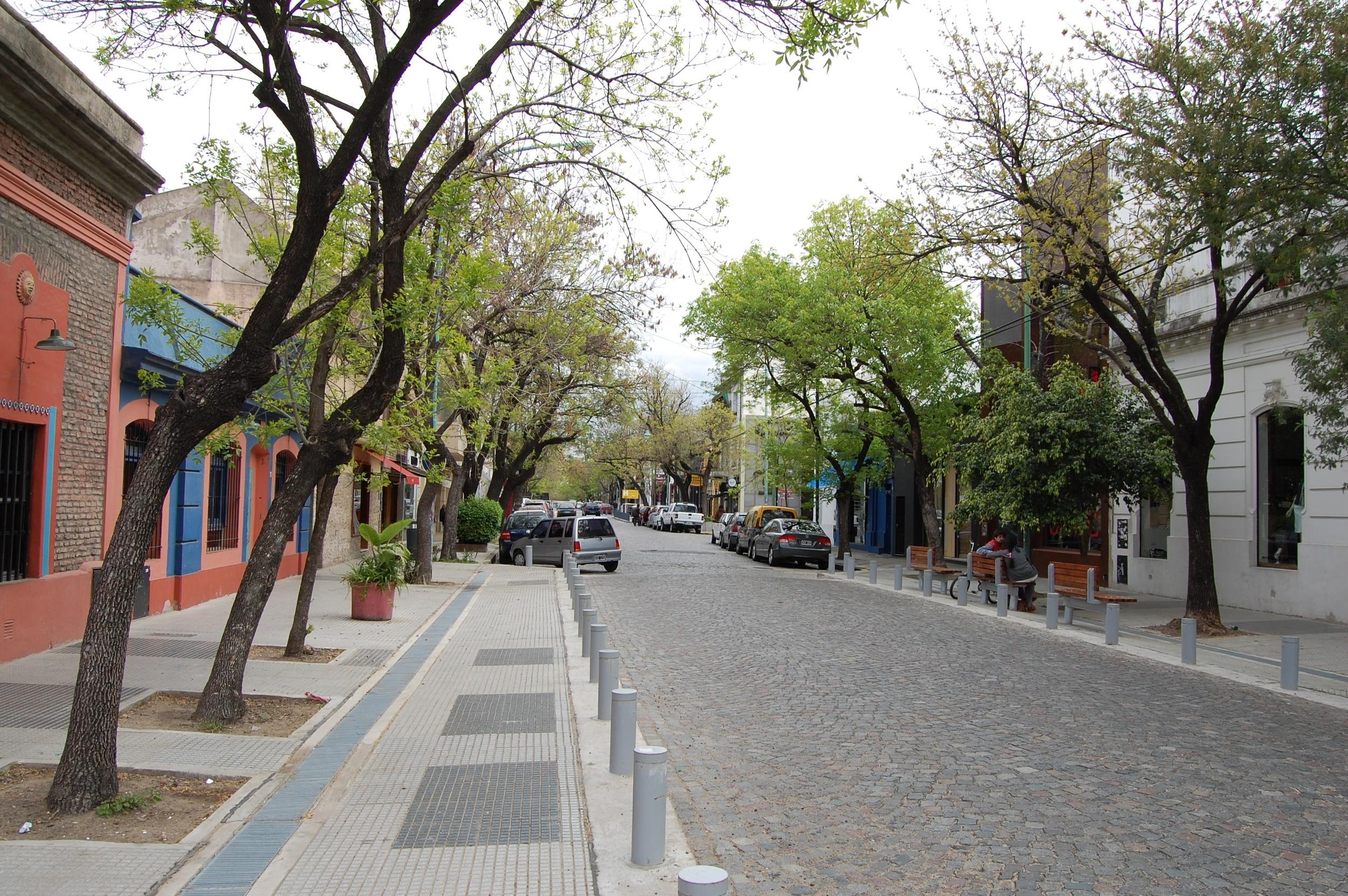 A_cobblestoned_street_in_Palermo_Soho.jpg