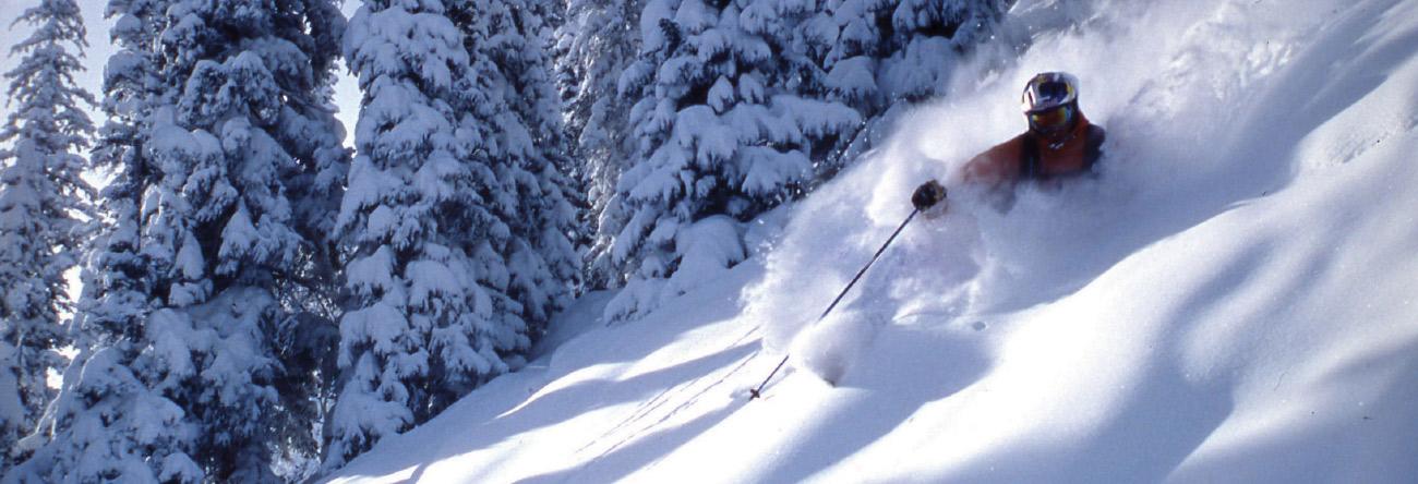 header-SnowCatPowderTours.jpg