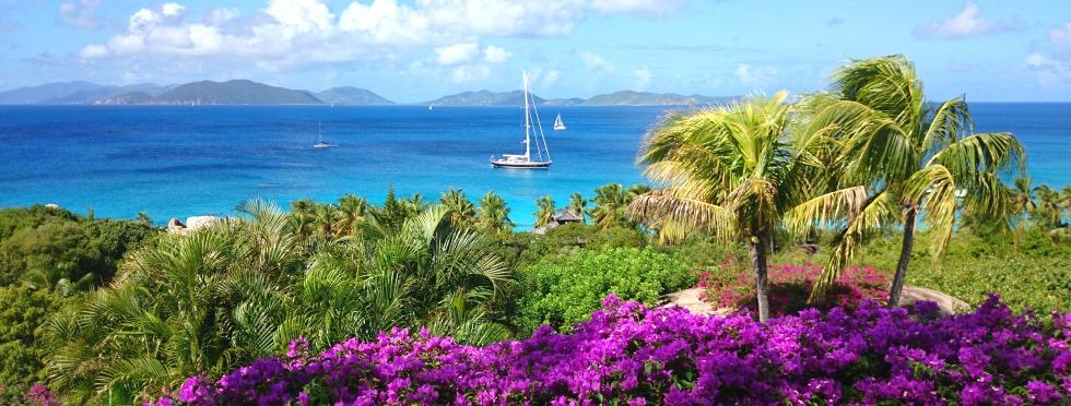 15-Luxury-British-Virgin-Islands-Valley-Trunk-View.JPG