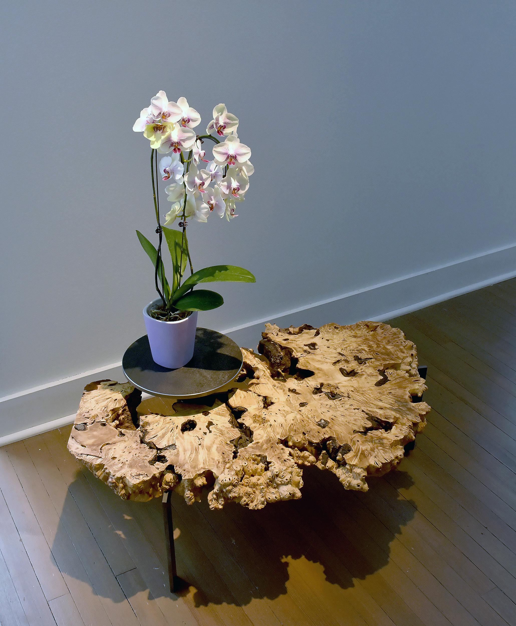 #060 Pedestal Table 2-2.jpg