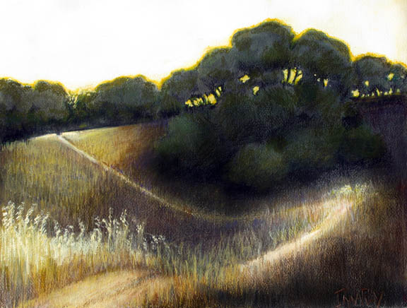 California_Hillside_Road_evening_sm.jpg