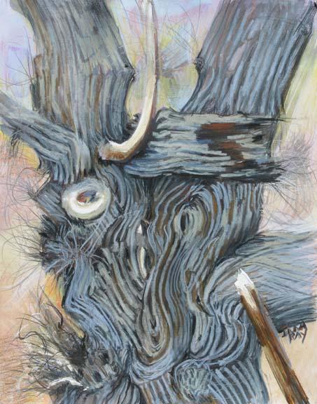 cottonwood_trunk_drapery_sm.jpg