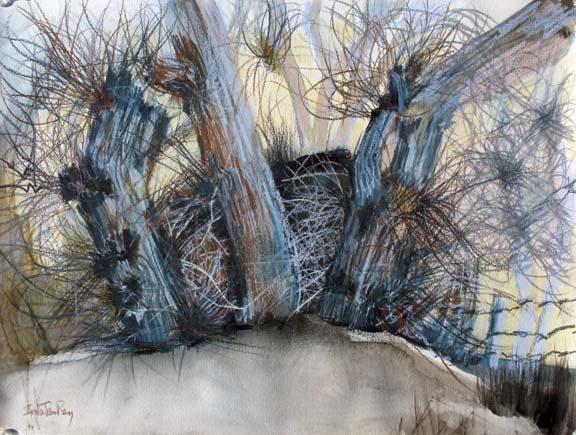 cottonwood_clump_blue-gray_sm.jpg