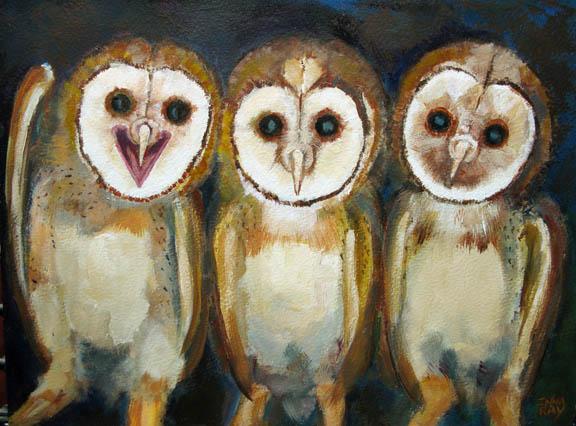 Owlets_3barnowls_sm.jpg