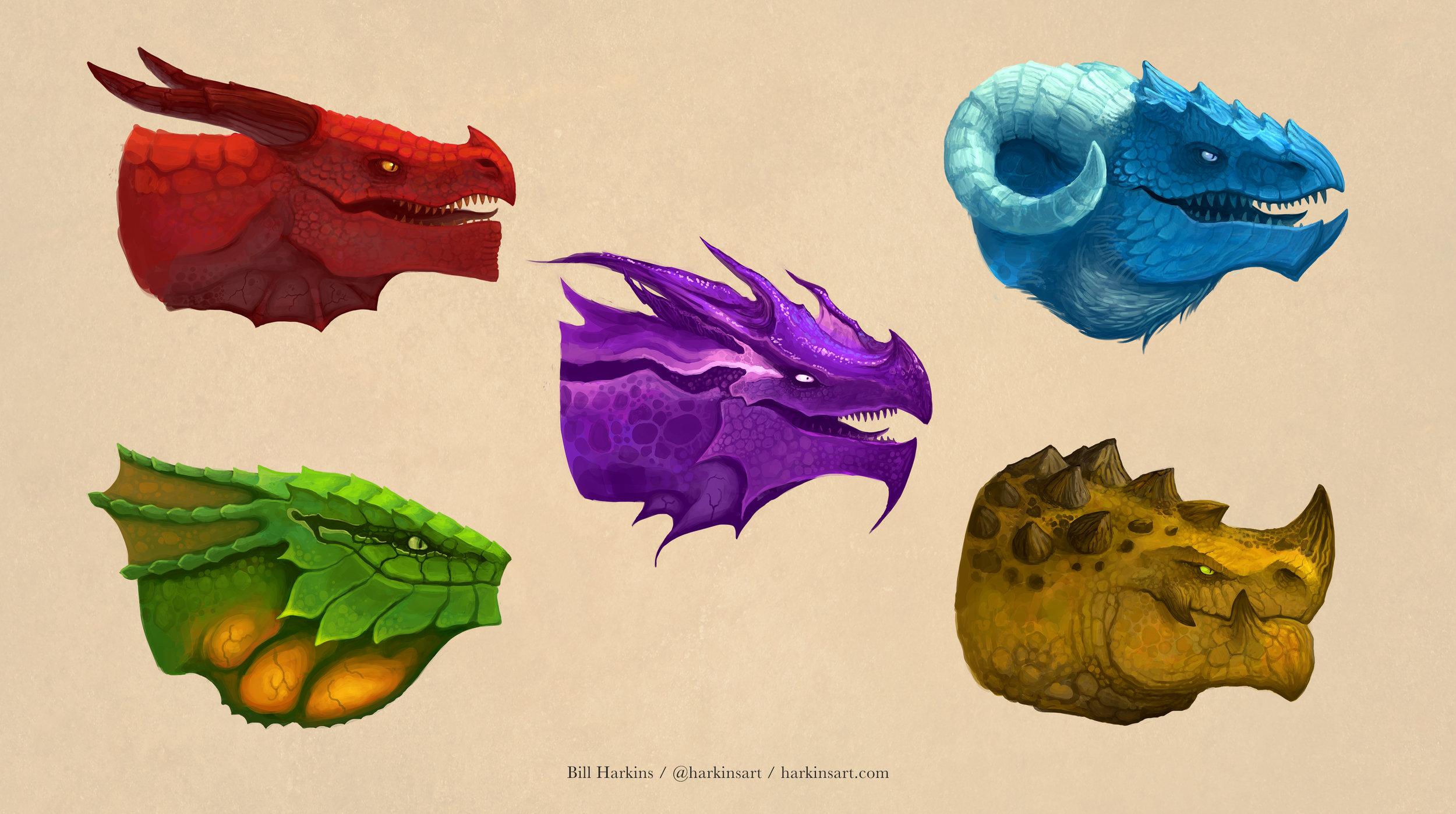 dragons-portfolio.jpg