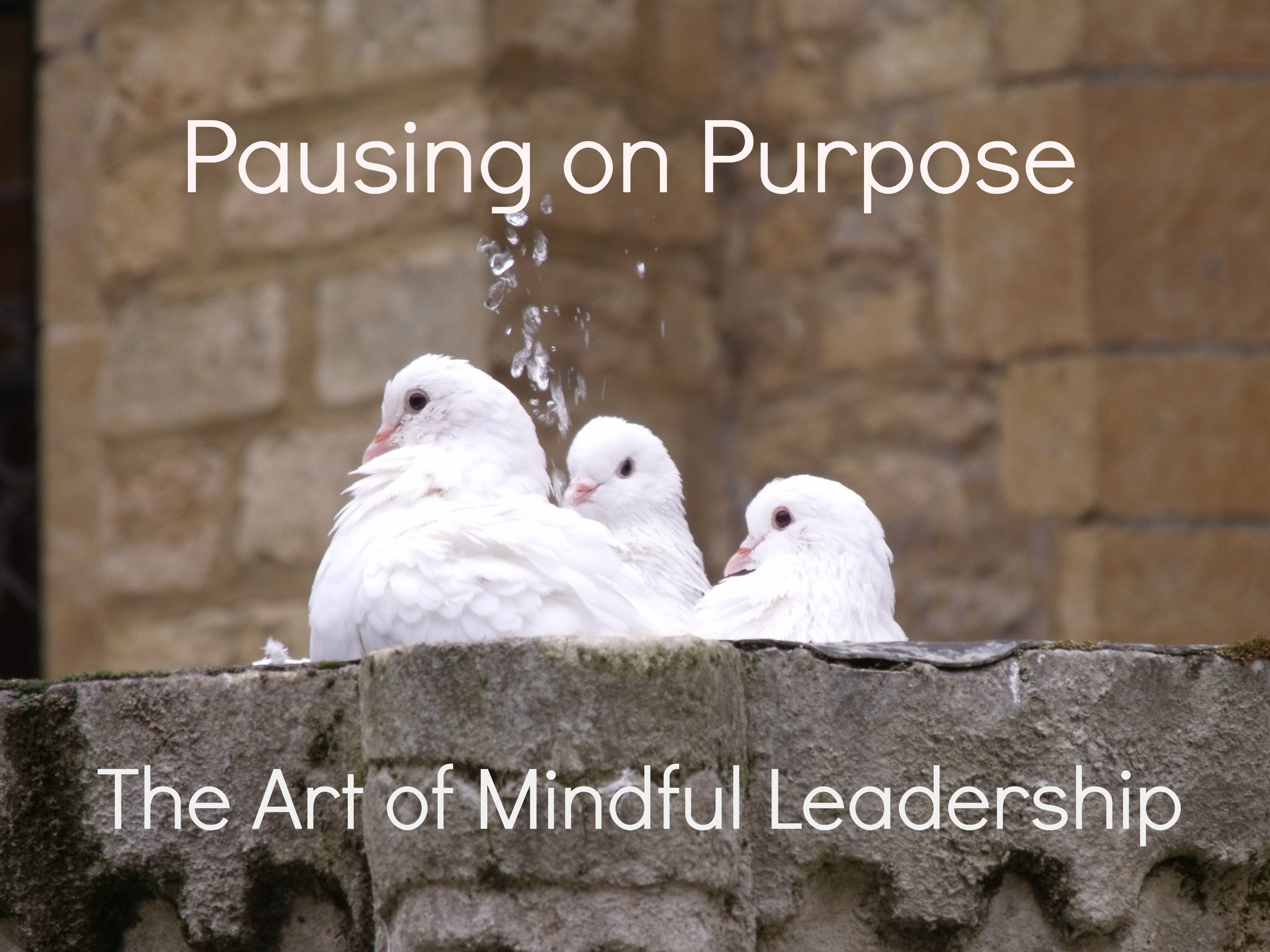 Pausing on Purpose - The Art of Mindful Leadership .jpg
