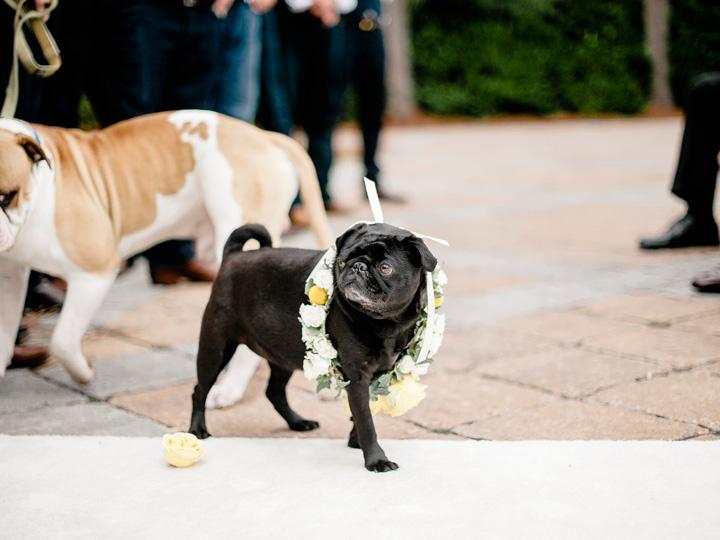 22Charleston-wedding-photographer.jpg