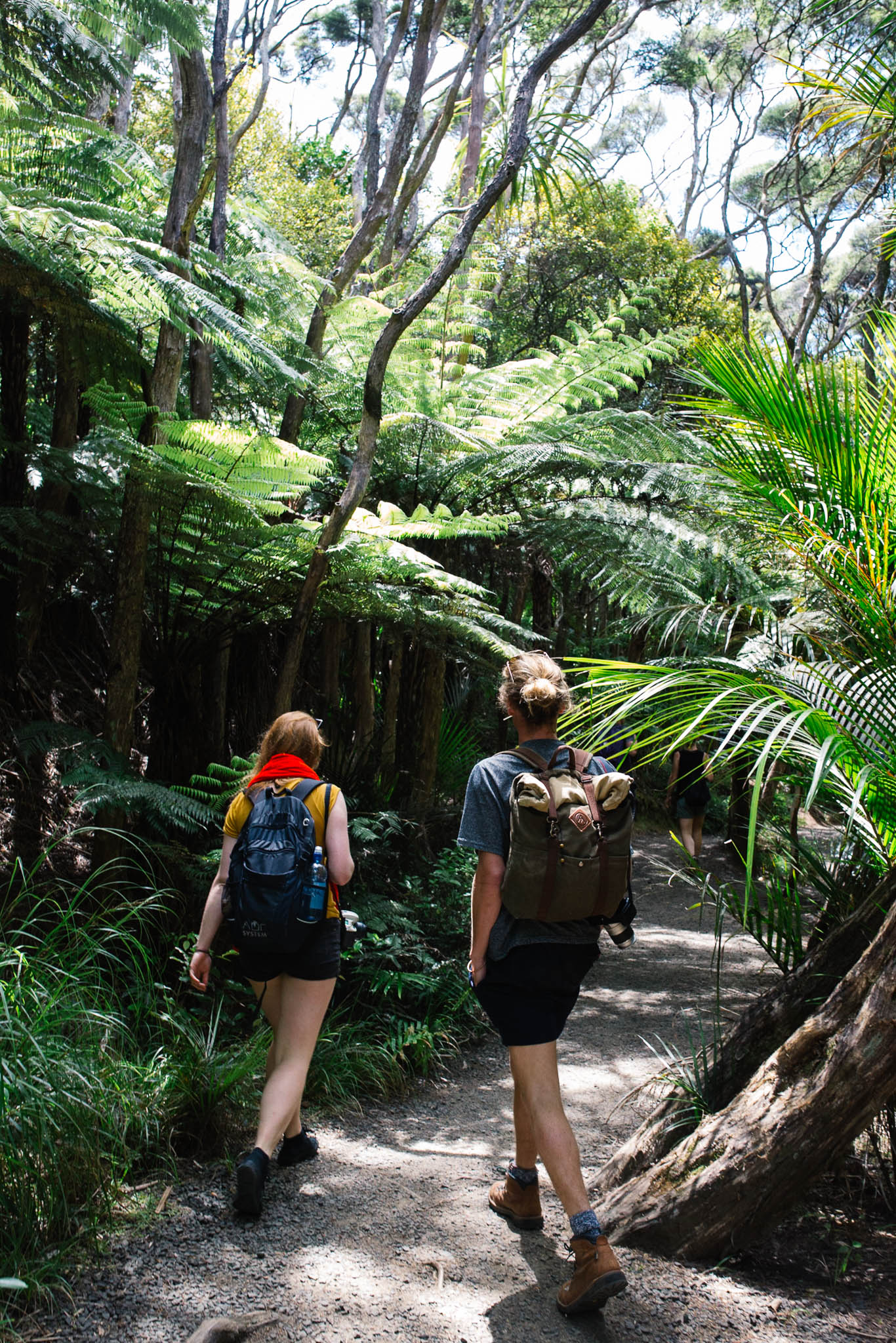 Ellen Richardson - Travel - New Zealand-88.jpg