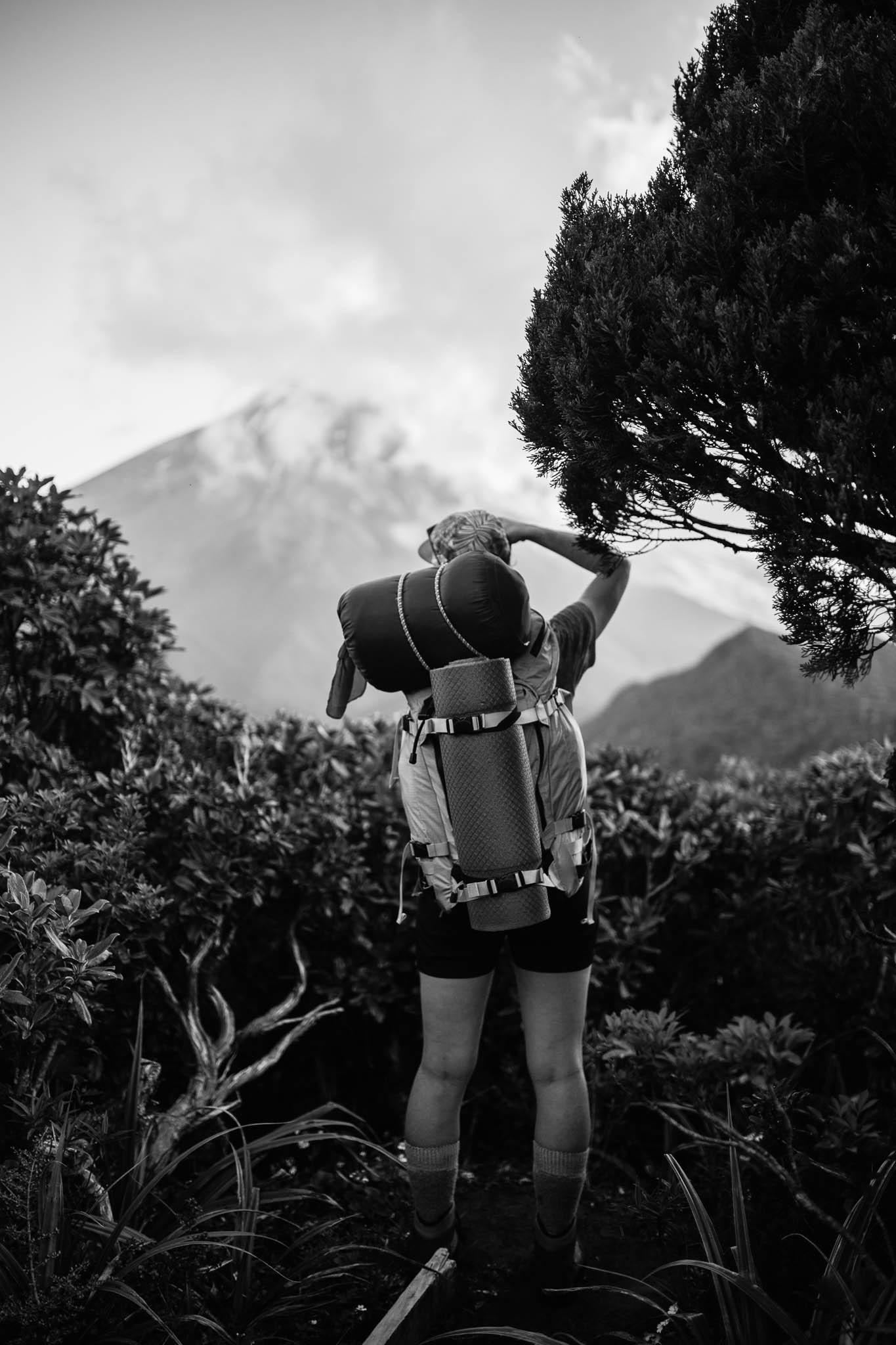 Ellen Richardson - Travel - Mt Taranaki-37.jpg