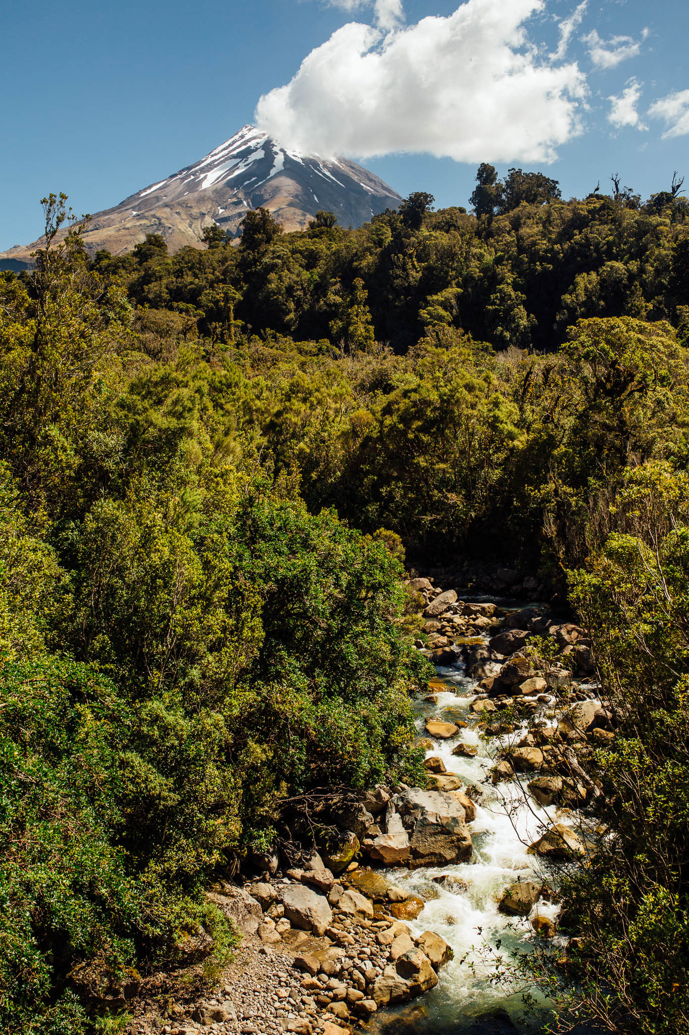 Ellen Richardson - Travel - Mt Taranaki-68.jpg