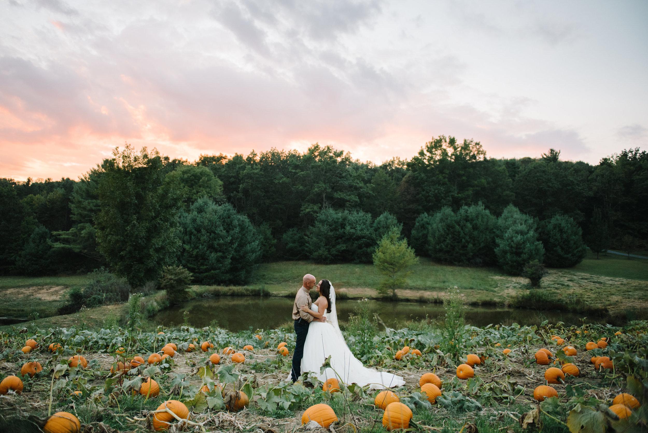 pumpkin-patch-sunset.jpg