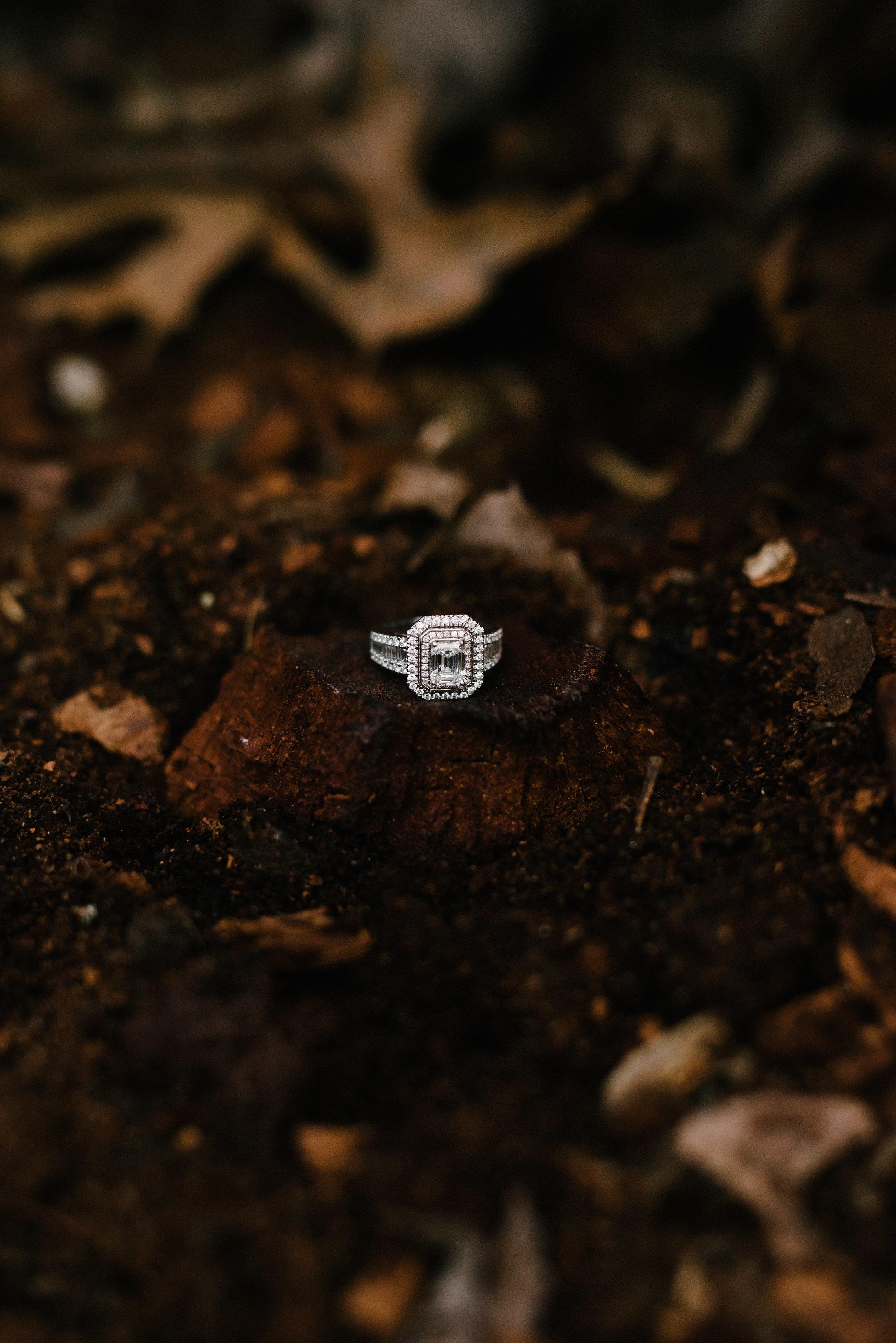 rectangular cut diamond engagement ring nestled in a tree