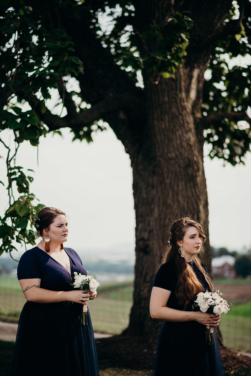 on-sunny-slope-farm-harrisonburg-wedding-virginia-8942-2.jpg