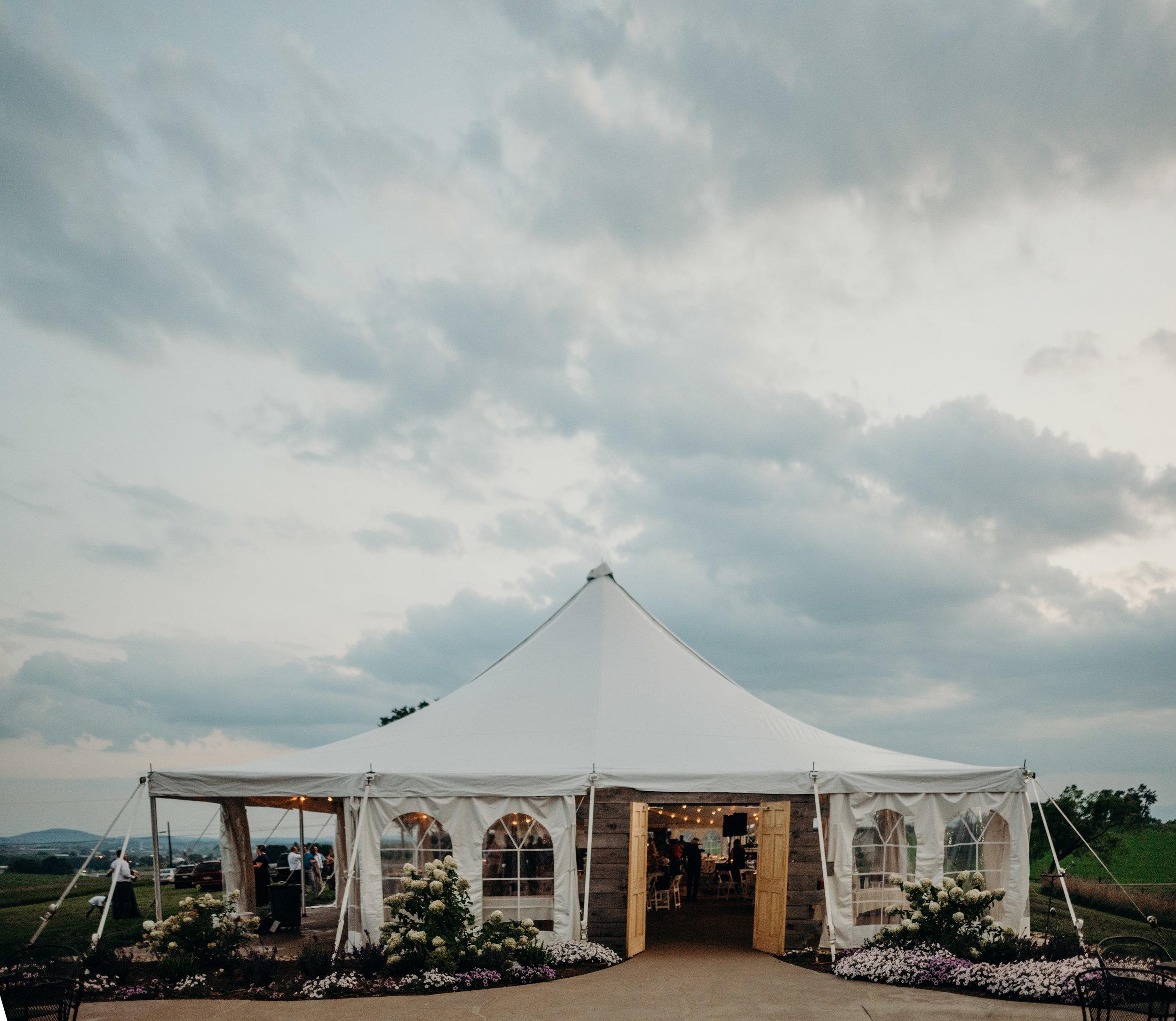 on-sunny-slope-farm-harrisonburg-wedding-virginia-9655.jpg