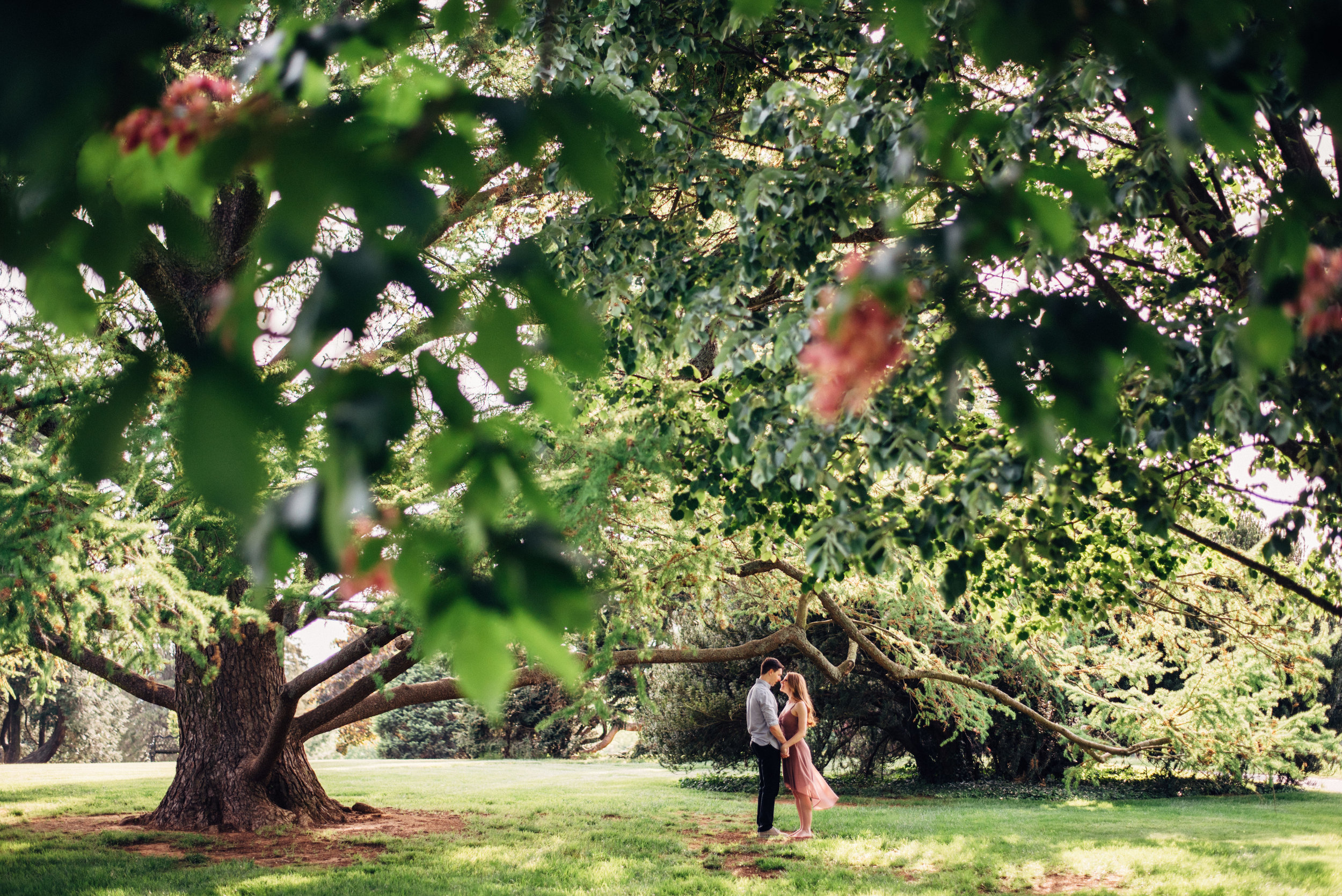 park engagement among flowers and trees