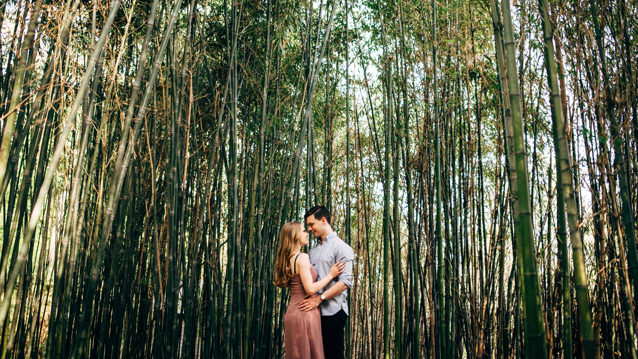 engagement photos couple in bamboo forest