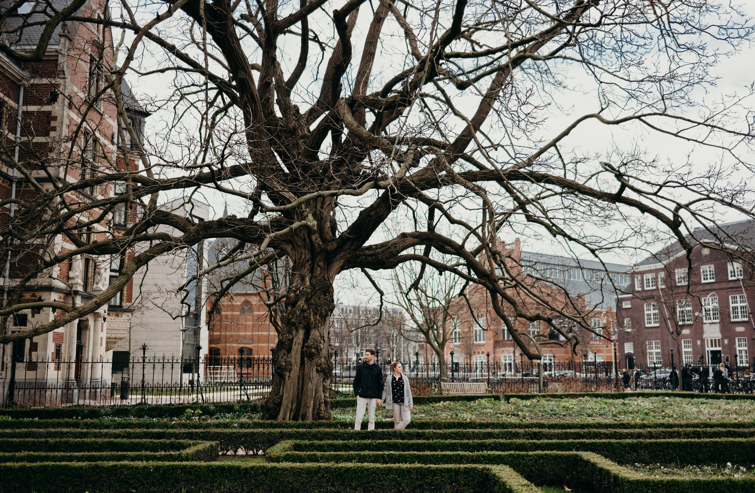 newly married couple standing next to a leafless tree in a garden in Amsterdam