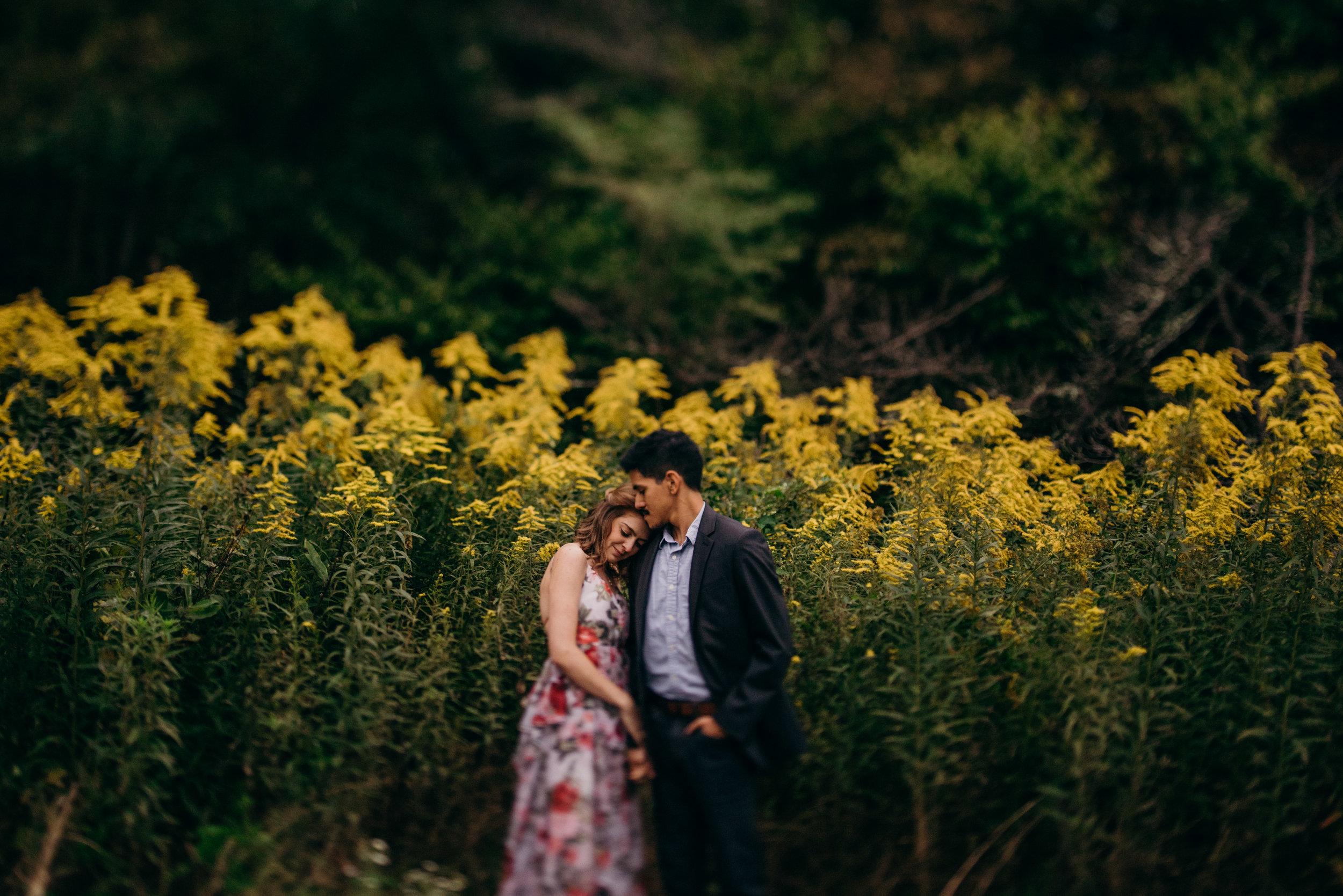 alvaro-sasha-skyline-drive-engagement-session-virginia-wedding-photographer-lindsey-paradiso-8671.jpg