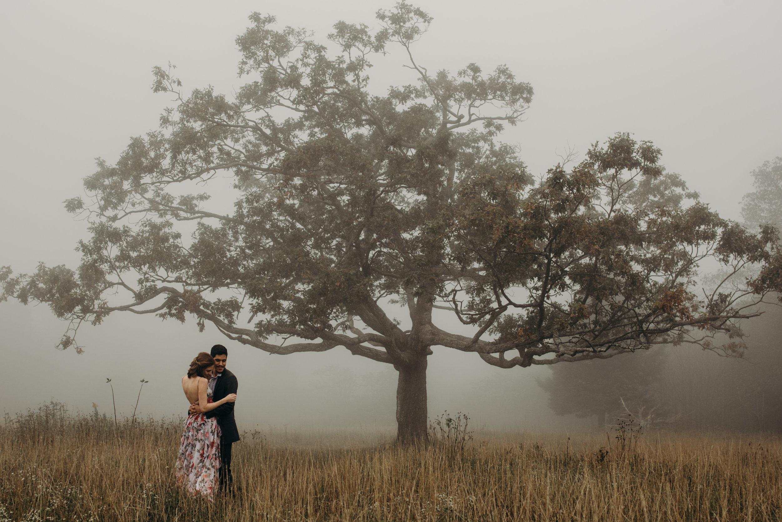 alvaro-sasha-skyline-drive-engagement-session-virginia-wedding-photographer-lindsey-paradiso-8394.jpg