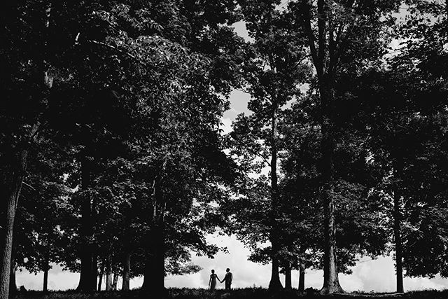 I photographed my childhood friend and neighbor Naomi's wedding this past weekend about 15 minutes from where we grew up and it was a complete flood of nostalgia. I loved it. It was also a scorcher, but Michael & Naomi were troopers and we were able to catch some great shots! [Not shown here: the minefield of cow-pies we had to navigate for this photo] . . . . #virginiaweddingplanner #weareengaged #loversofthelight #marryingmybestfriend #justsaidyes #herecomesthebride #heputaringonit #bridalgoals #authenticlovemag #firstsandlasts #travelweddingphotographer #theknotweddings #thebelovedstories #shenandoahvalleybride #virginiaweddings #virginiabride #theknotrings #weddingportrait #worldwidephotographer #weddingphotographers #weddinglove #wanderingweddings #weddingphotoinspiration #herecomesthebride #engagementseason #dmvweddings #dmvphotographer #vaweddingphotographer