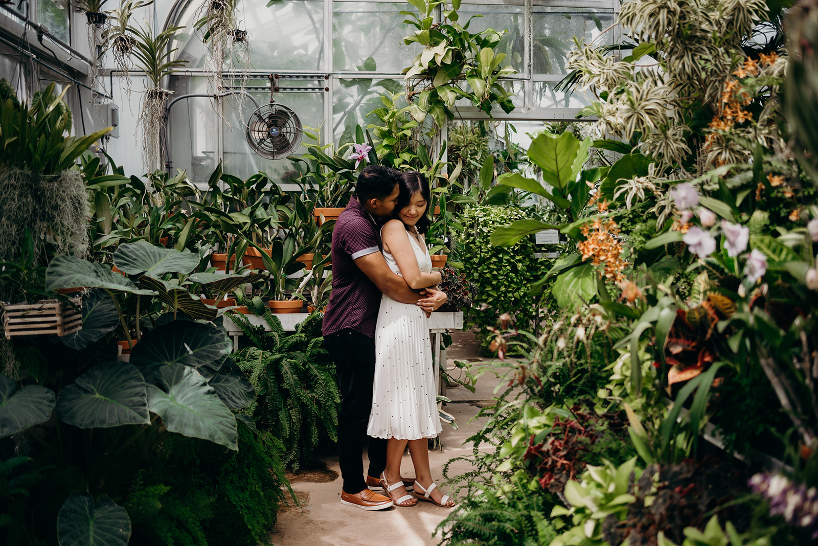 Washington DC botanical garden engagement session hillwood estates and gardens greenhouse