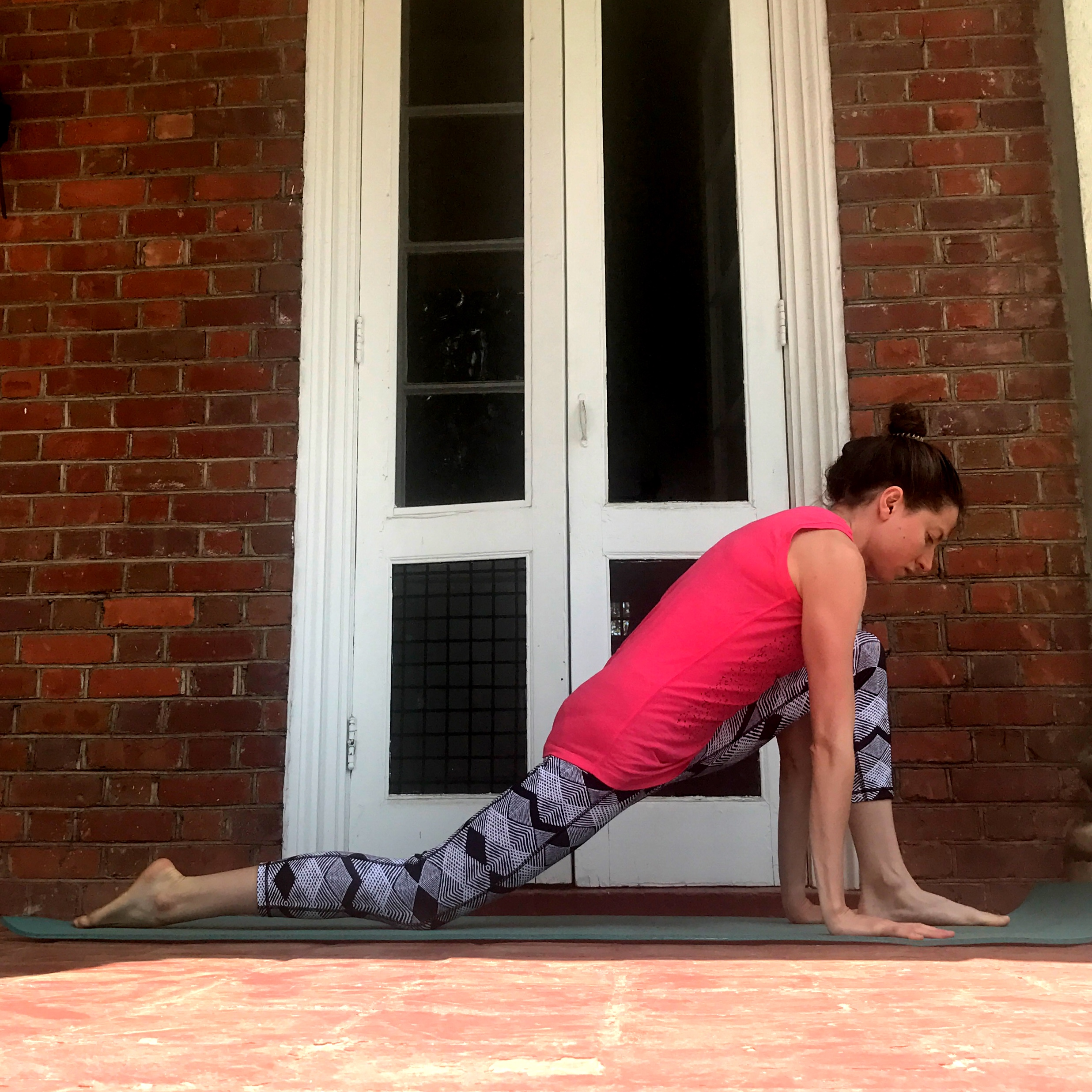 Low Lunge, supported with palms