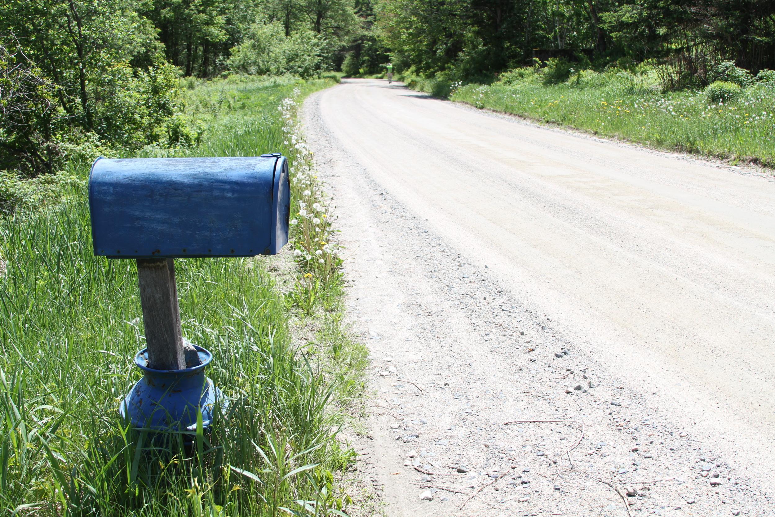 mailbox-walker-in-distance.JPG