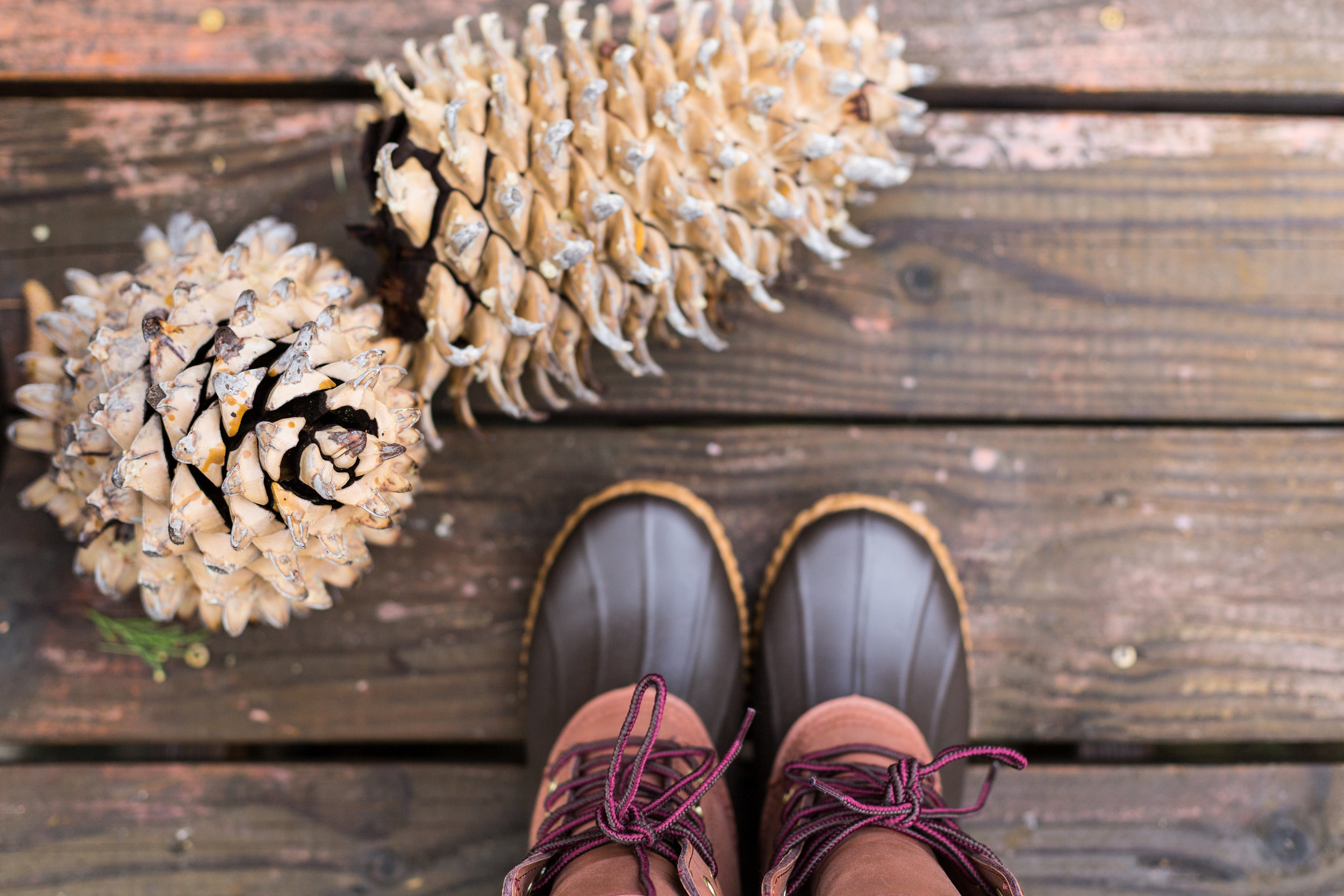 Sevenly Winter Lookbook-Lookbook-0006.jpg