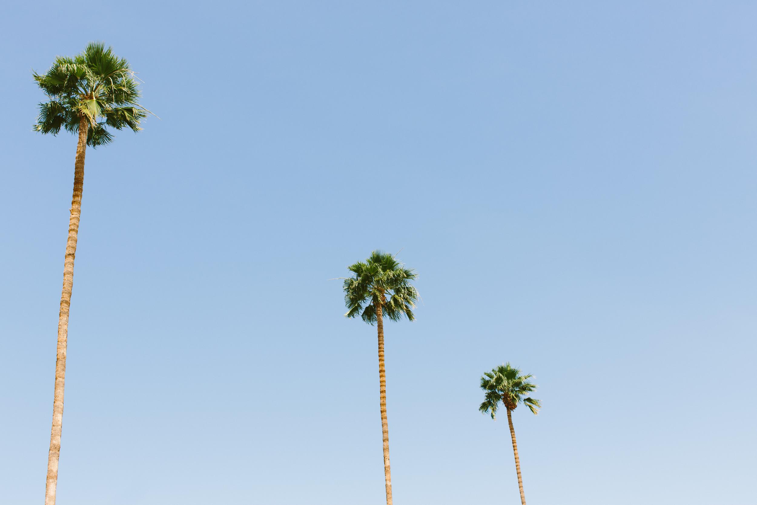PalmSprings-20.jpg