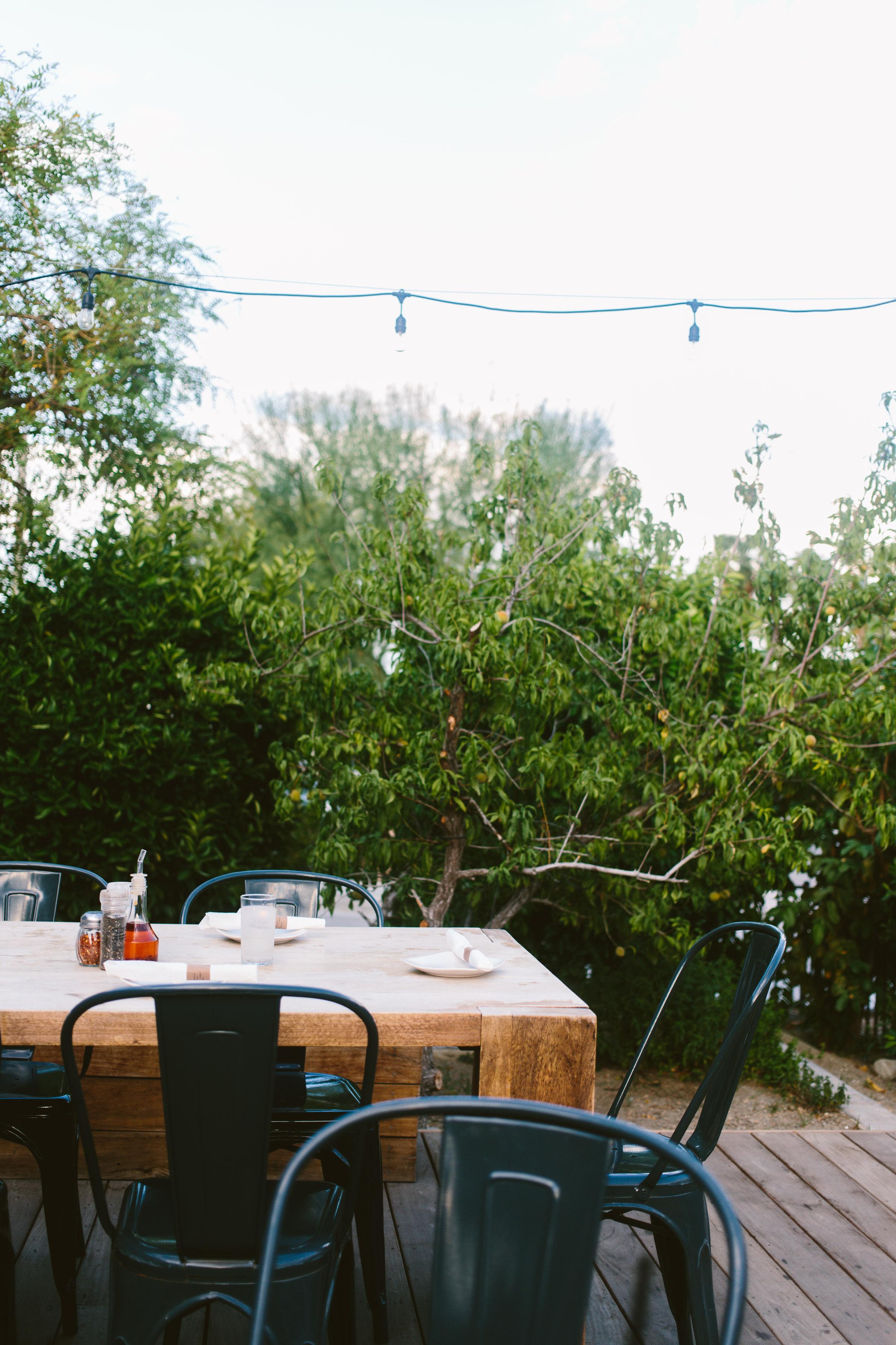 Palm Springs-68.jpg
