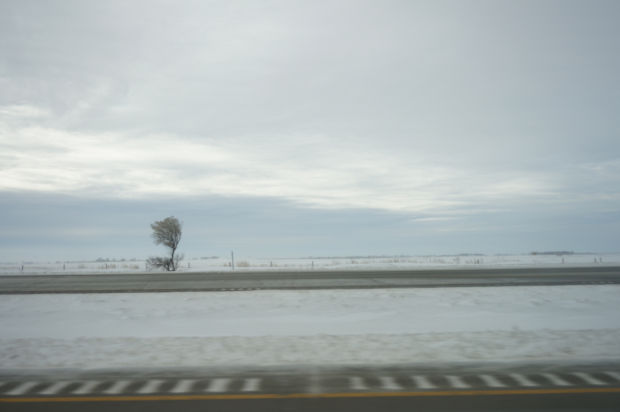 I loved this photo of our drive in North Dakota. Frigid cold and a lone tree dead-set on survival.
