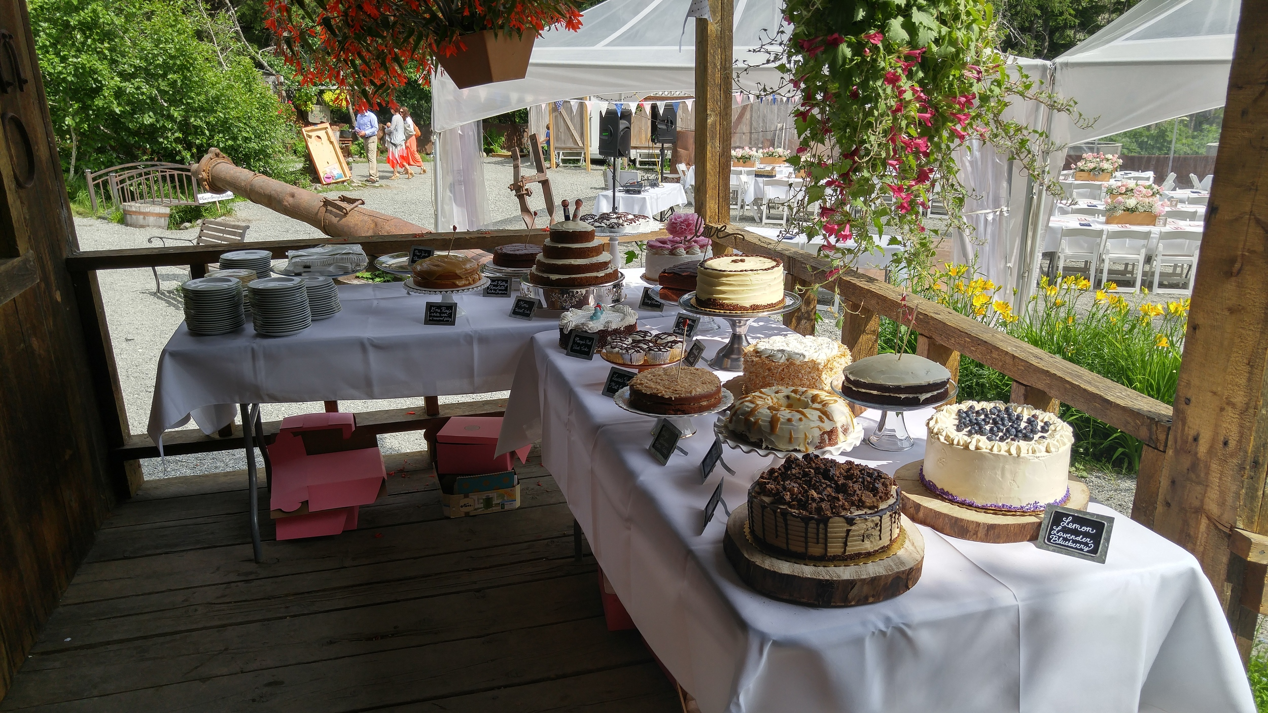Our cake table! We had antique floral dishes and fifteen different cakes-- some homemade and the rest supplemented by Celestial Sweets. My favorite is still my Mom's Carrot Cake!
