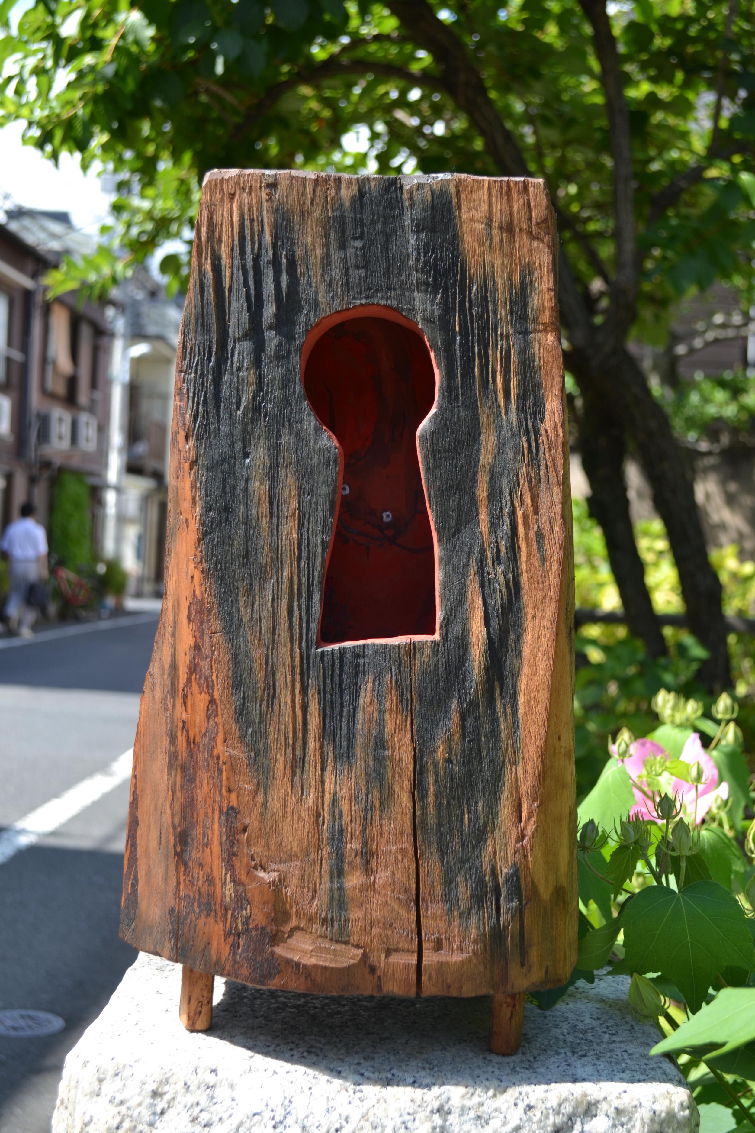 Hidden Voices 2012