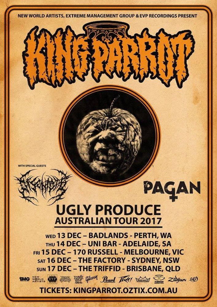 tour2017-kingparrot.jpg