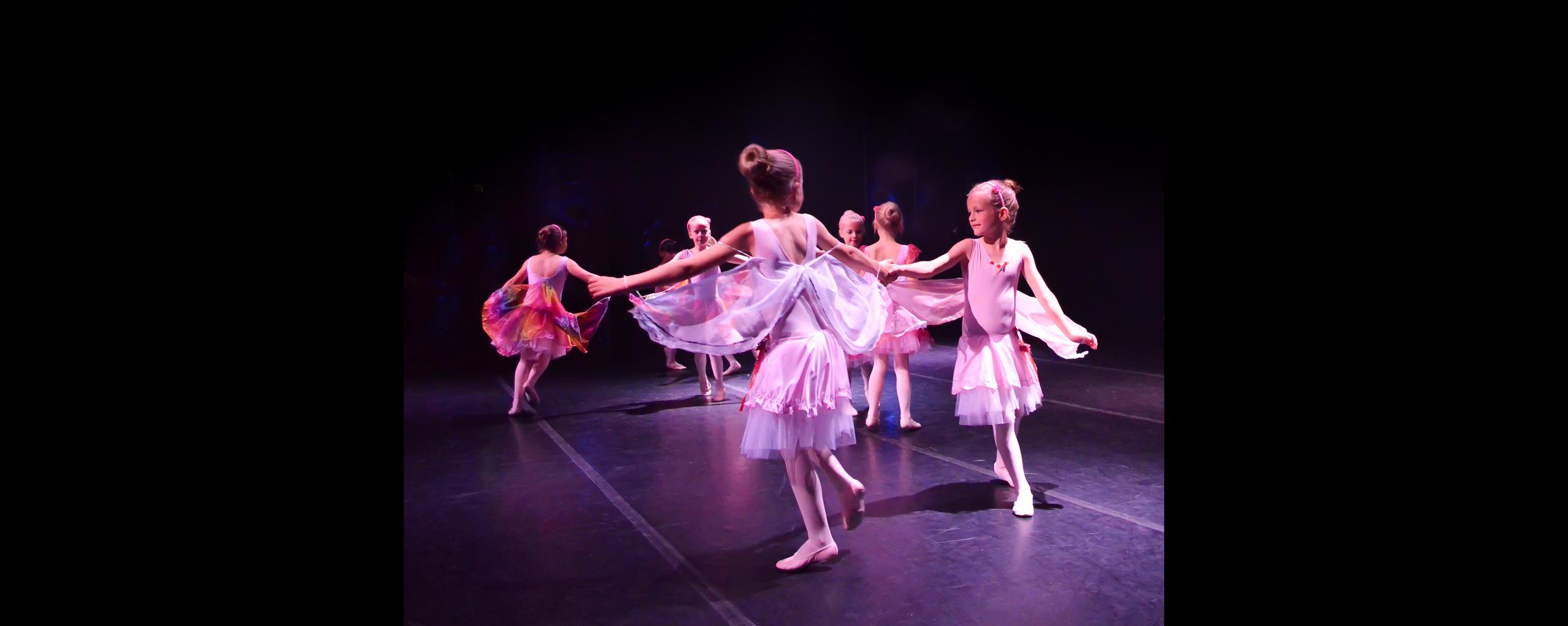 roze ballet fe.jpg