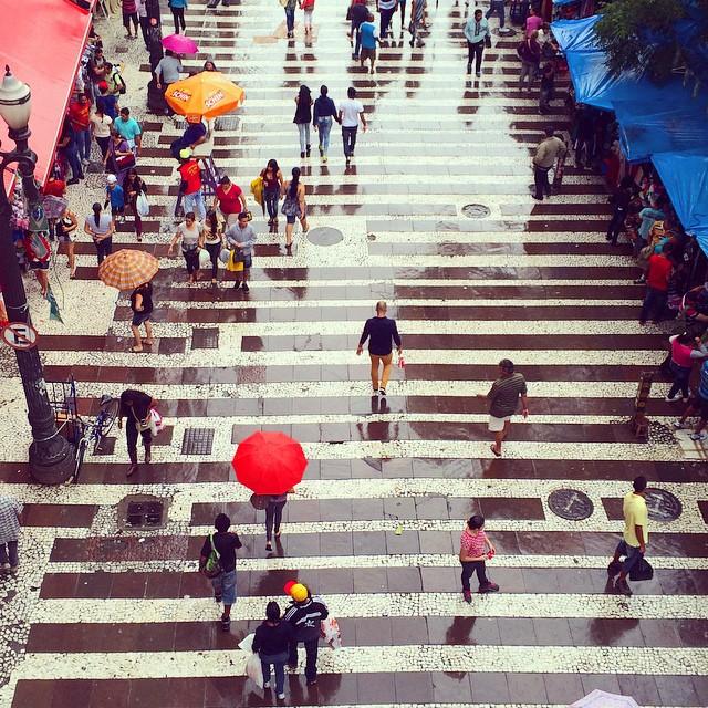Rain / Chuva