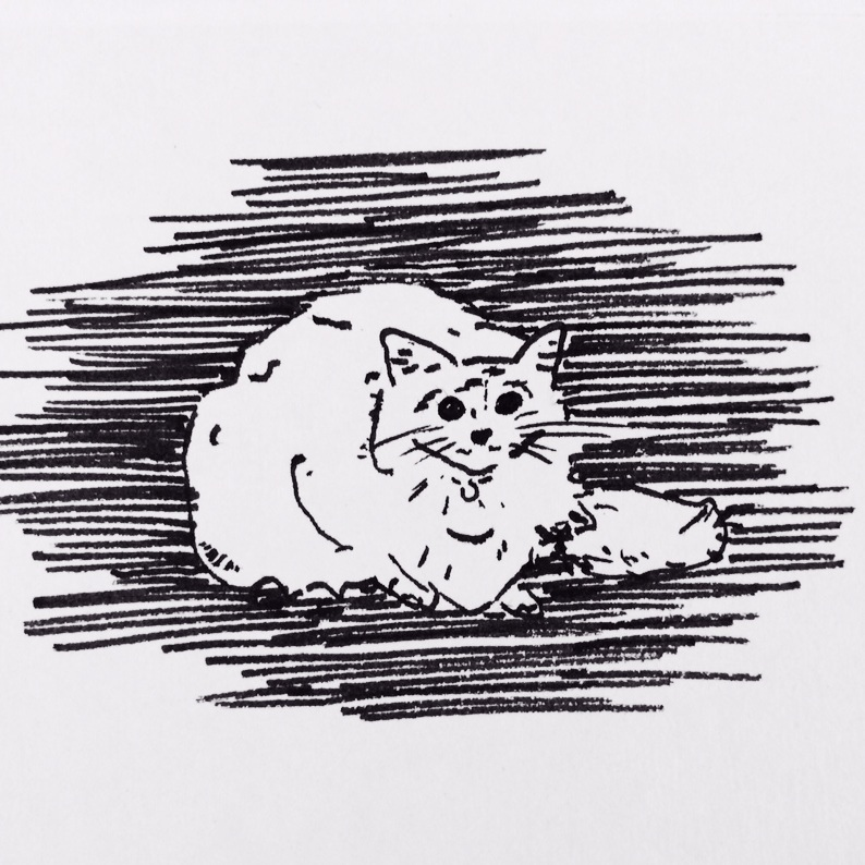 Pekoe+Sketch.jpg