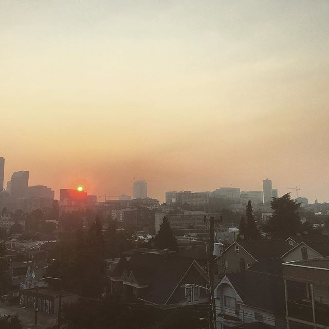 Seattle looking(and feeling) a lot like Los Angeles lately. #seattle #heatwave #noairconditioning