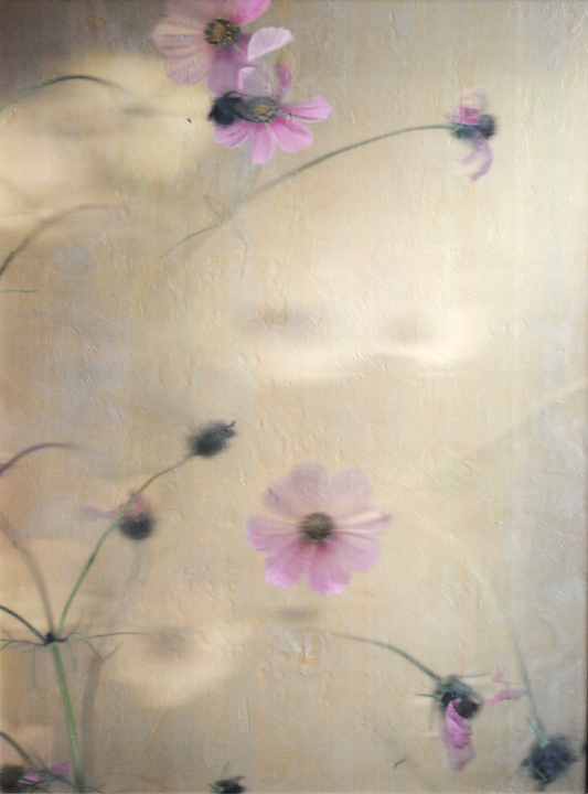 Barb Vogel, Cosmos with Bee, photography, encaustic, painting, floral, Sherrie Gallerie