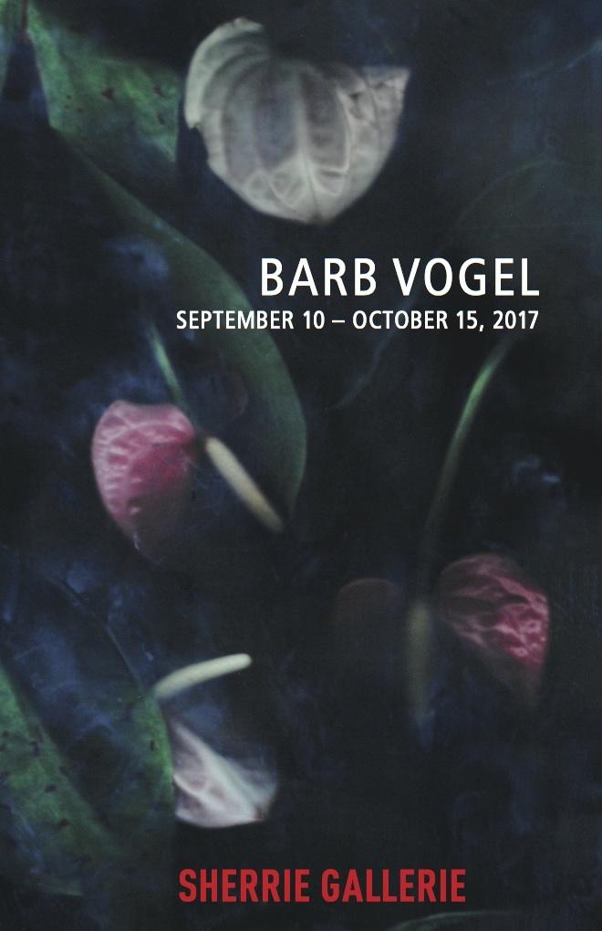 Barb Vogel v2.jpg