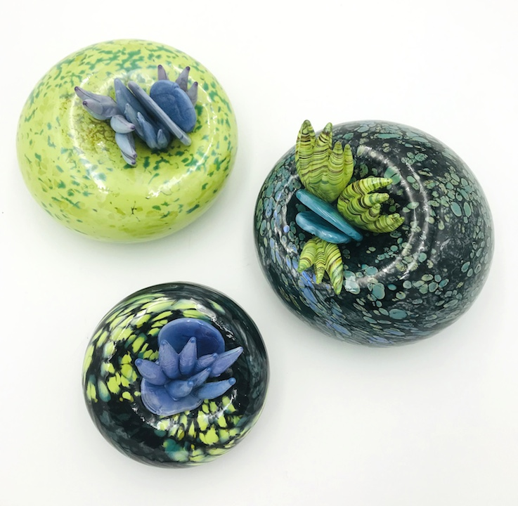 Molly Burke blown glass succulent cactus wall installation paperweight vase Sherrie Gallerie Short North Art Gallery Columbus Ohio