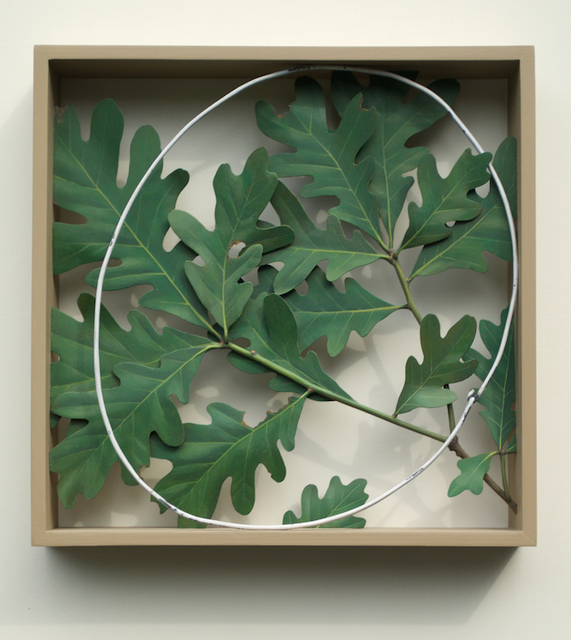 Ron Isaacs Oakbox acrylic on birch plywood construction trompe l'oeil oak leaves floral sculpture woodwork Sherrie Gallerie Short North Art Gallery