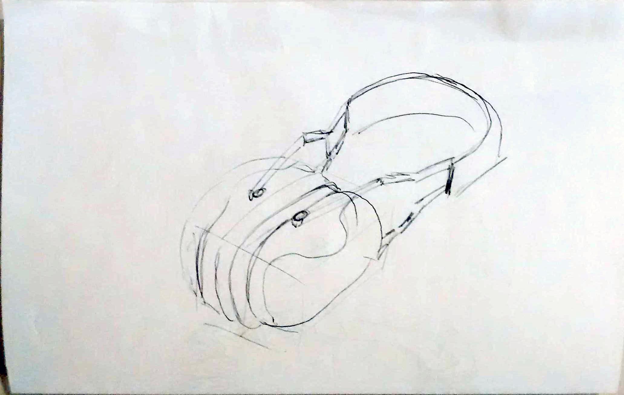 hearingProtect.png