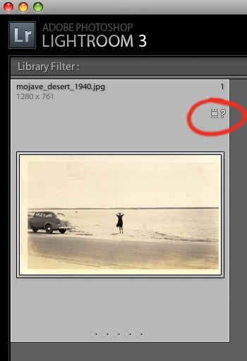 Lightroom Library Grid View question mark