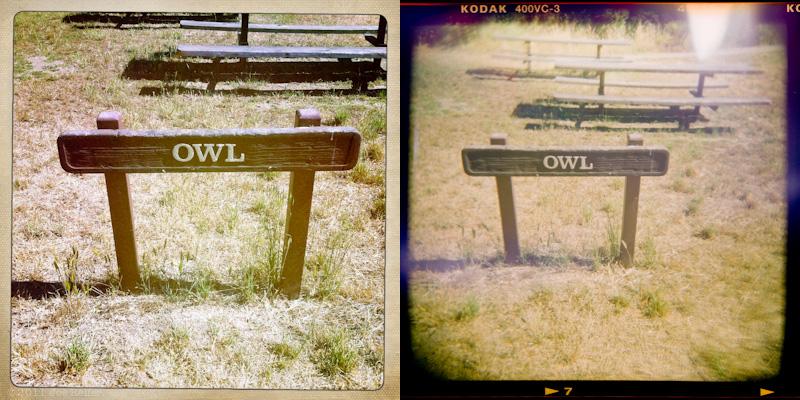 Holga vs Hipstamatic: Owl picnic area -- by Joe Reifer